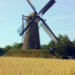 Oogstdag molen De Roosdonck • 07-07-2018